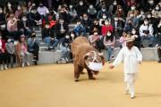 <한국의 탈춤> 유네스코 인류무형문화유산 대표목록 등재신청서 제출